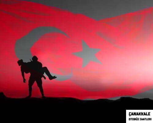 çanakkale kurtuluş savaşı resmi-3